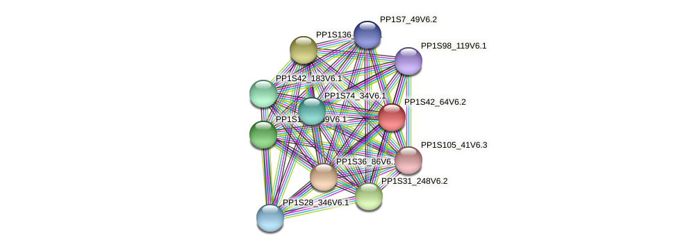 PP1S42_64V6.2 protein (Physcomitrella patens) - STRING interaction network