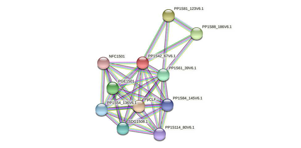 PP1S42_67V6.1 protein (Physcomitrella patens) - STRING interaction network
