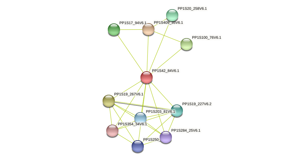 PP1S42_84V6.1 protein (Physcomitrella patens) - STRING interaction network