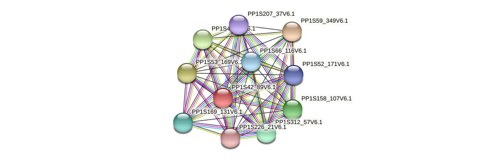 PP1S42_89V6.1 protein (Physcomitrella patens) - STRING interaction network