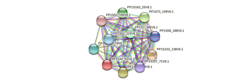 PP1S42_92V6.1 protein (Physcomitrella patens) - STRING interaction network