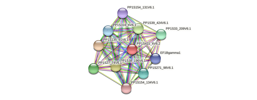 PP1S431_6V6.2 protein (Physcomitrella patens) - STRING interaction network