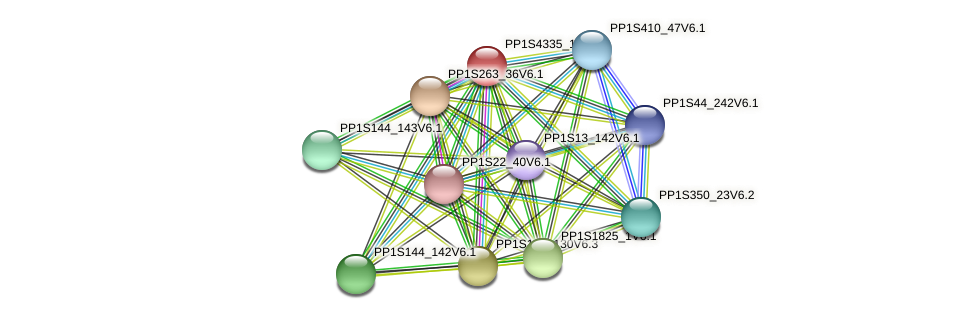 PP1S4335_1V6.1 protein (Physcomitrella patens) - STRING interaction network