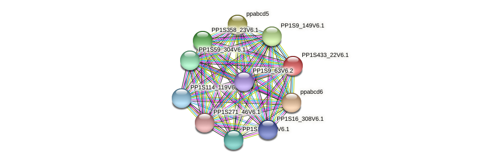 PP1S433_22V6.1 protein (Physcomitrella patens) - STRING interaction network