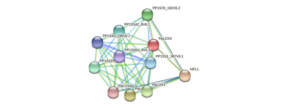 PpLOX3 protein (Physcomitrella patens) - STRING interaction network
