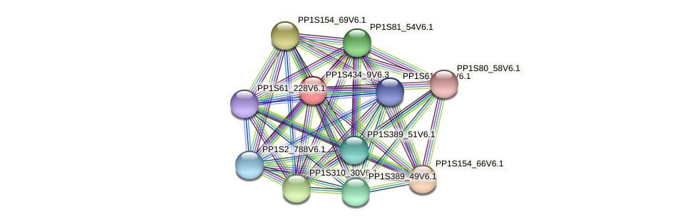 PP1S434_9V6.1 protein (Physcomitrella patens) - STRING interaction network
