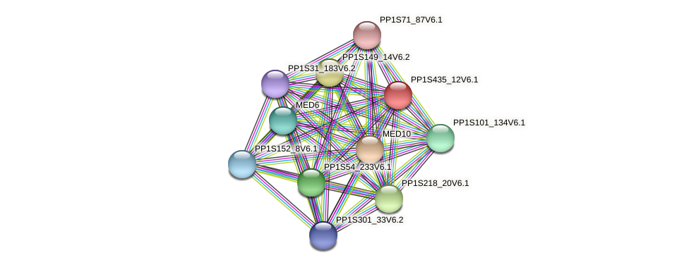 PP1S435_12V6.1 protein (Physcomitrella patens) - STRING interaction network
