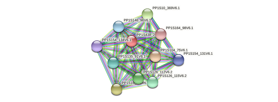 PP1S438_20V6.1 protein (Physcomitrella patens) - STRING interaction network