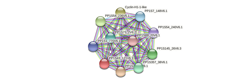 PP1S43_121V6.1 protein (Physcomitrella patens) - STRING interaction network
