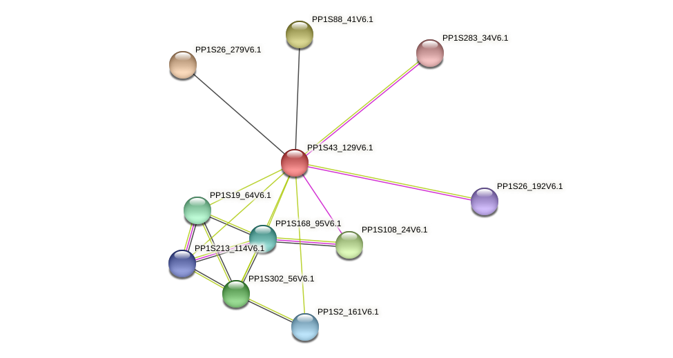 PP1S43_129V6.1 protein (Physcomitrella patens) - STRING interaction network