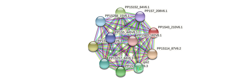 PP1S43_210V6.1 protein (Physcomitrella patens) - STRING interaction network
