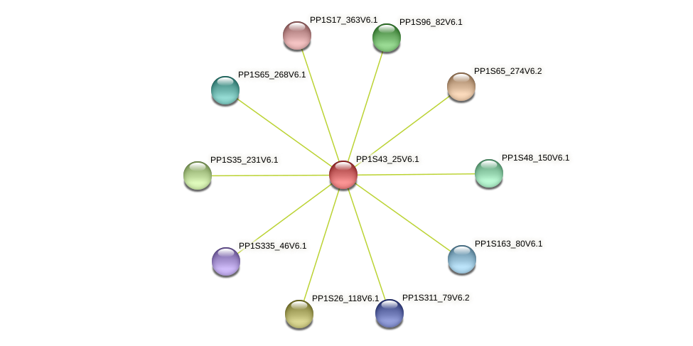 PP1S43_25V6.1 protein (Physcomitrella patens) - STRING interaction network