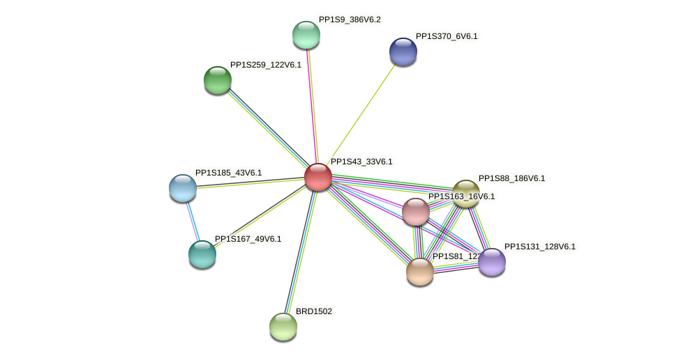 PP1S43_33V6.1 protein (Physcomitrella patens) - STRING interaction network