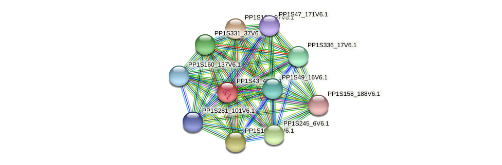 papr protein (Physcomitrella patens) - STRING interaction network