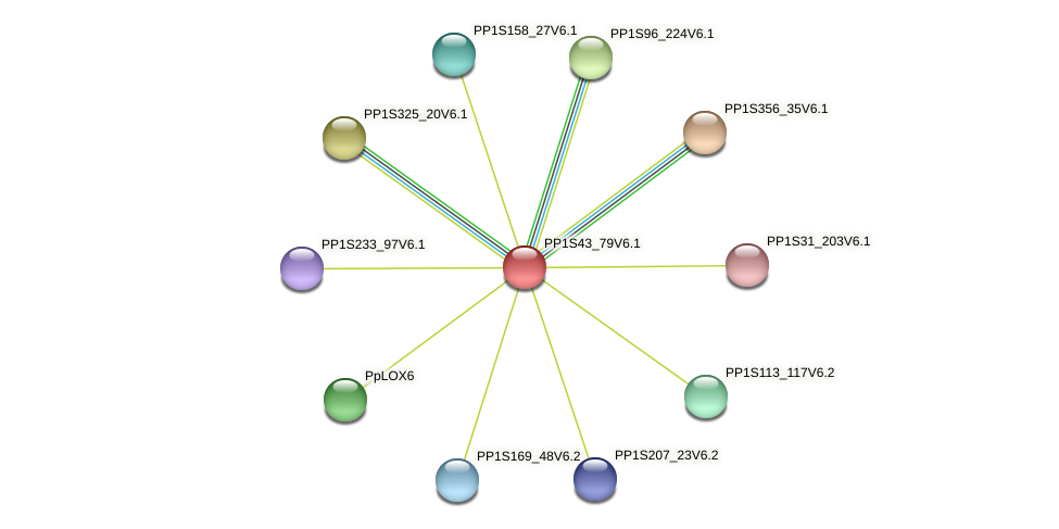 PP1S43_79V6.1 protein (Physcomitrella patens) - STRING interaction network
