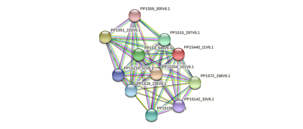 PP1S440_11V6.1 protein (Physcomitrella patens) - STRING interaction network