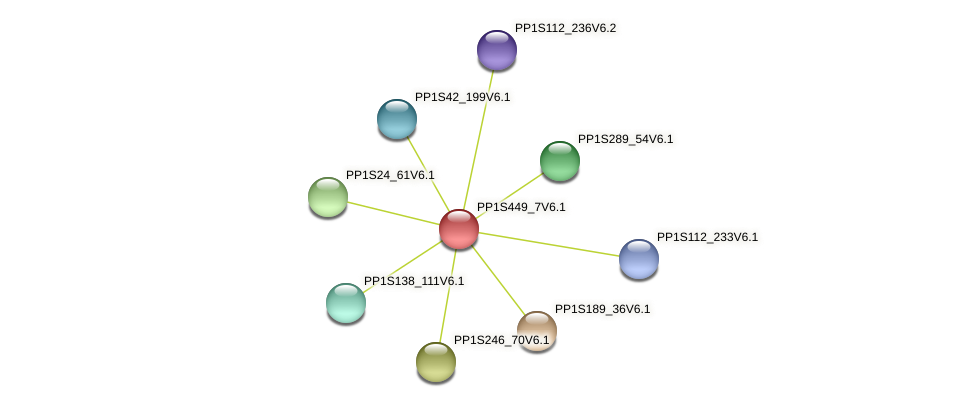 PP1S449_7V6.1 protein (Physcomitrella patens) - STRING interaction network