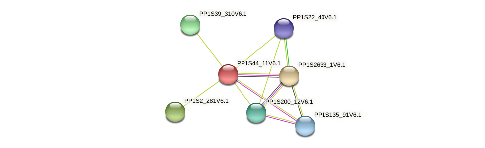 PP1S44_11V6.1 protein (Physcomitrella patens) - STRING interaction network