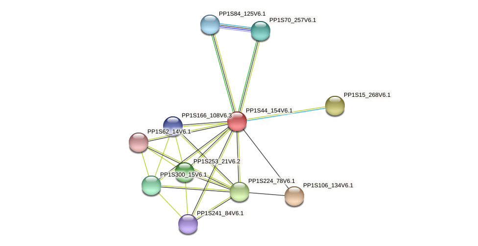 PP1S44_154V6.1 protein (Physcomitrella patens) - STRING interaction network