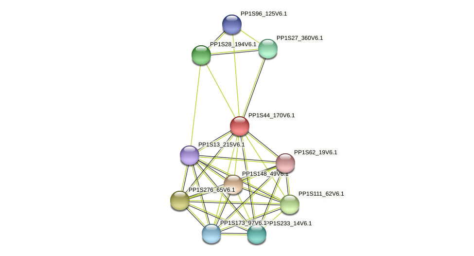 PP1S44_170V6.1 protein (Physcomitrella patens) - STRING interaction network