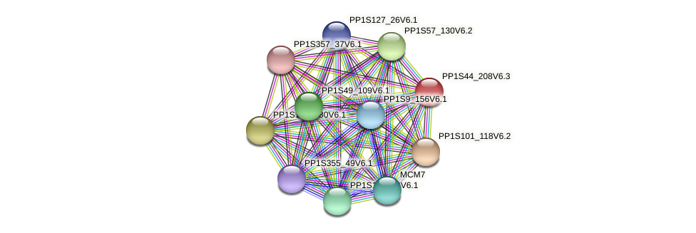 PP1S44_208V6.3 protein (Physcomitrella patens) - STRING interaction network