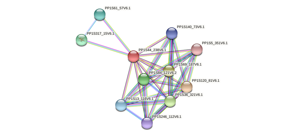 PP1S44_238V6.1 protein (Physcomitrella patens) - STRING interaction network