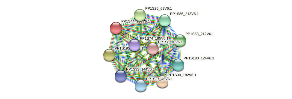 PP1S44_268V6.1 protein (Physcomitrella patens) - STRING interaction network