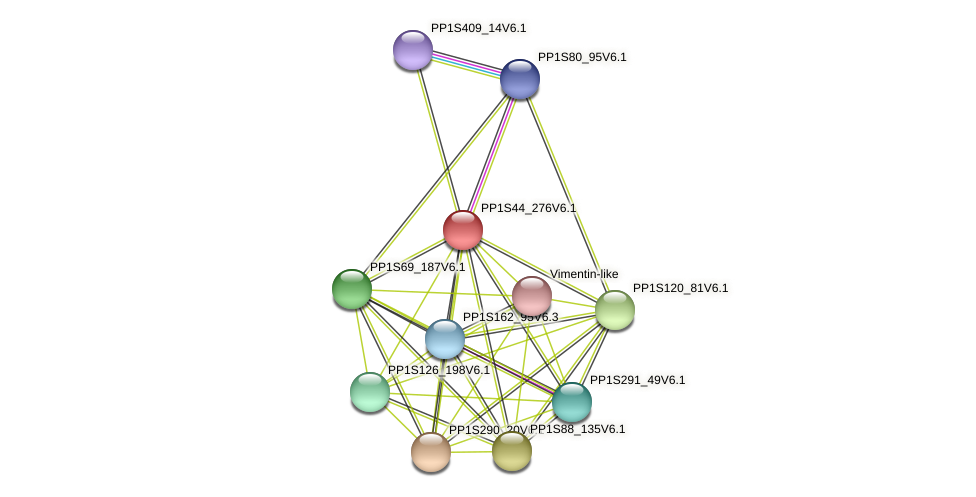 PP1S44_276V6.1 protein (Physcomitrella patens) - STRING interaction network
