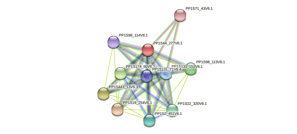 PP1S44_277V6.1 protein (Physcomitrella patens) - STRING interaction network