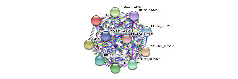 PP1S44_302V6.1 protein (Physcomitrella patens) - STRING interaction network