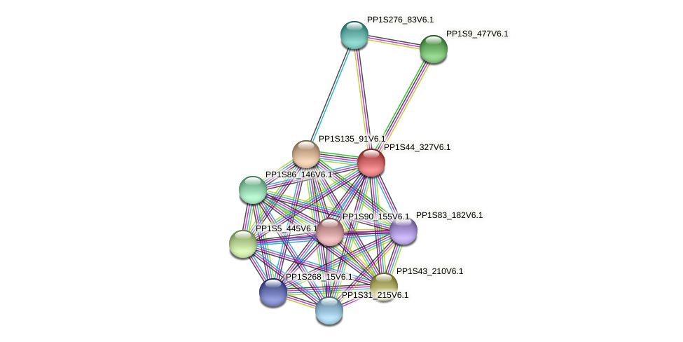 PP1S44_327V6.1 protein (Physcomitrella patens) - STRING interaction network