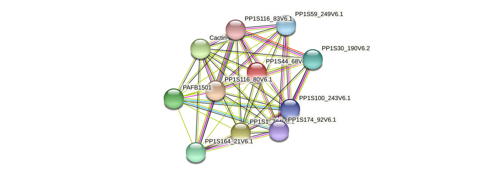 PP1S44_68V6.1 protein (Physcomitrella patens) - STRING interaction network