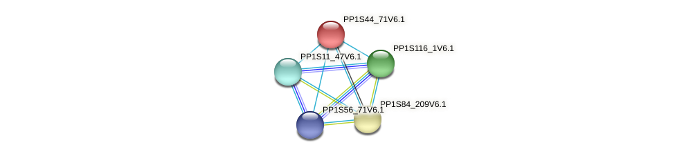 PP1S44_71V6.1 protein (Physcomitrella patens) - STRING interaction network