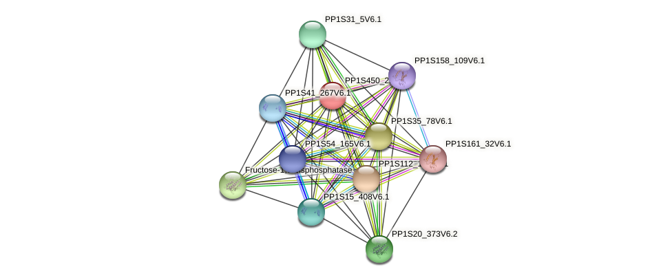 PP1S450_22V6.1 protein (Physcomitrella patens) - STRING interaction network