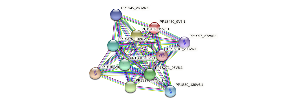 PP1S450_9V6.1 protein (Physcomitrella patens) - STRING interaction network