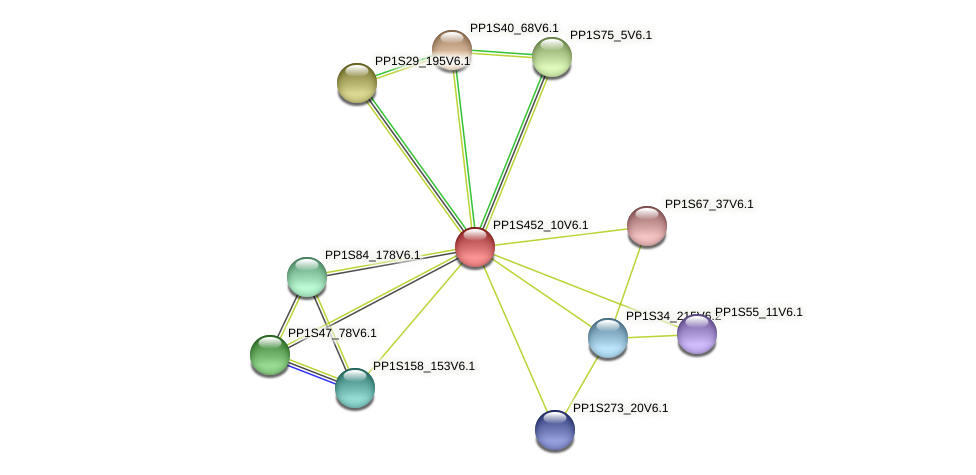 PP1S452_10V6.1 protein (Physcomitrella patens) - STRING interaction network