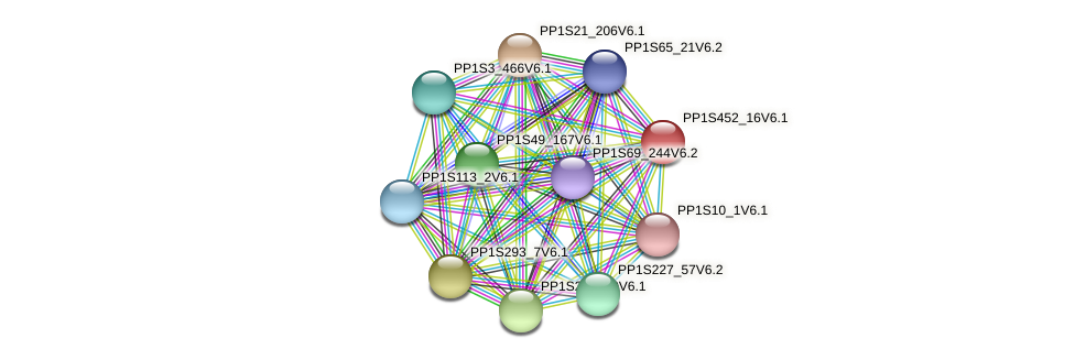PP1S452_16V6.1 protein (Physcomitrella patens) - STRING interaction network
