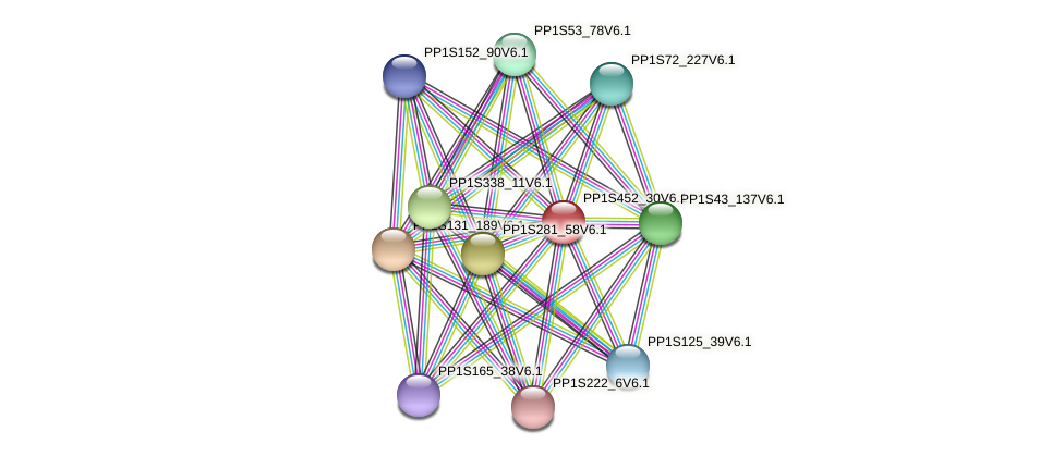 PP1S452_30V6.1 protein (Physcomitrella patens) - STRING interaction network