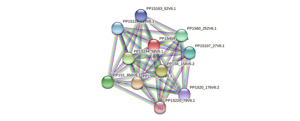 PP1S454_18V6.1 protein (Physcomitrella patens) - STRING interaction network
