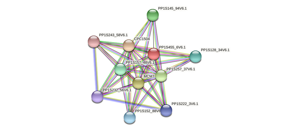 PP1S455_6V6.1 protein (Physcomitrella patens) - STRING interaction network