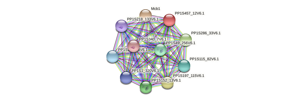PP1S457_12V6.1 protein (Physcomitrella patens) - STRING interaction network