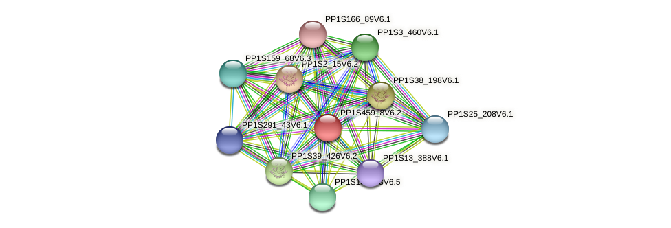 PP1S459_8V6.1 protein (Physcomitrella patens) - STRING interaction network