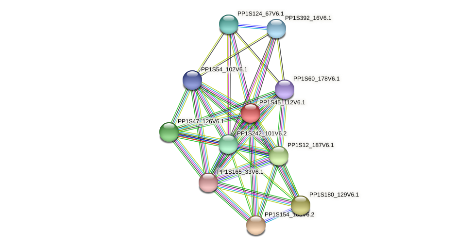 PP1S45_112V6.1 protein (Physcomitrella patens) - STRING interaction network