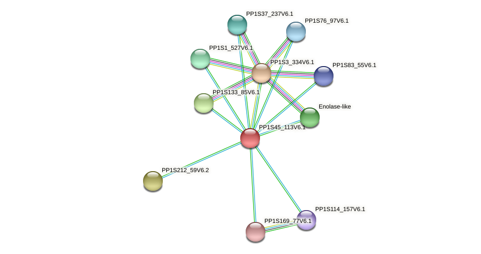 PP1S45_113V6.1 protein (Physcomitrella patens) - STRING interaction network