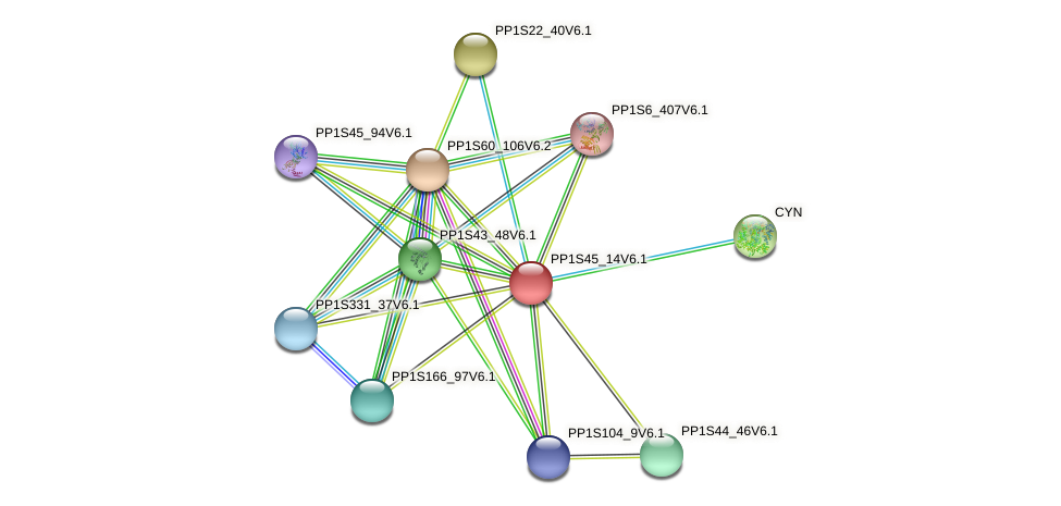PP1S45_14V6.1 protein (Physcomitrella patens) - STRING interaction network