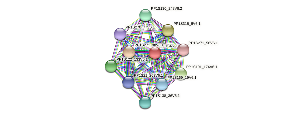PP1S45_164V6.1 protein (Physcomitrella patens) - STRING interaction network