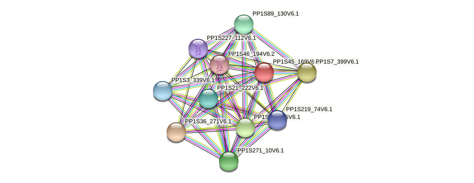 PP1S45_169V6.1 protein (Physcomitrella patens) - STRING interaction network