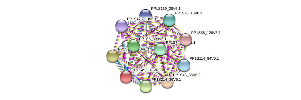 PP1S45_218V6.1 protein (Physcomitrella patens) - STRING interaction network