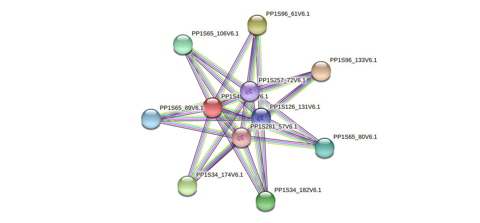 PP1S45_236V6.1 protein (Physcomitrella patens) - STRING interaction network