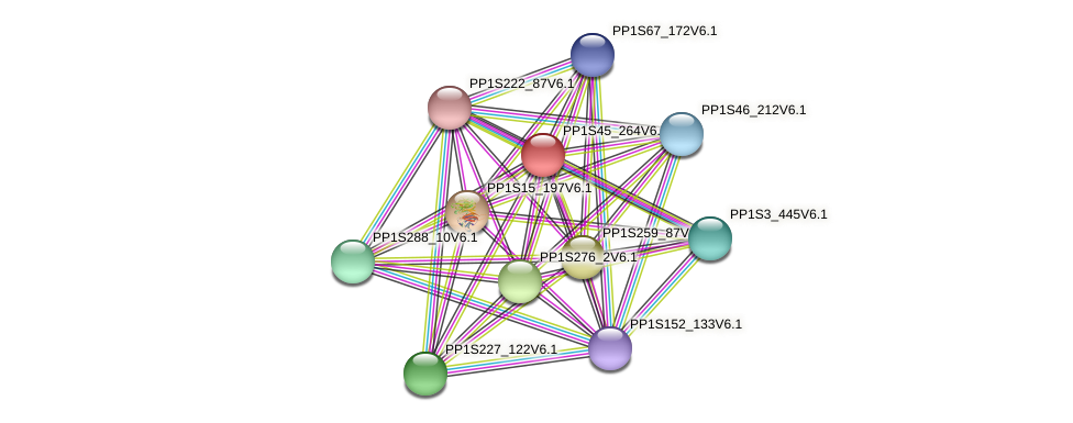 PP1S45_264V6.1 protein (Physcomitrella patens) - STRING interaction network